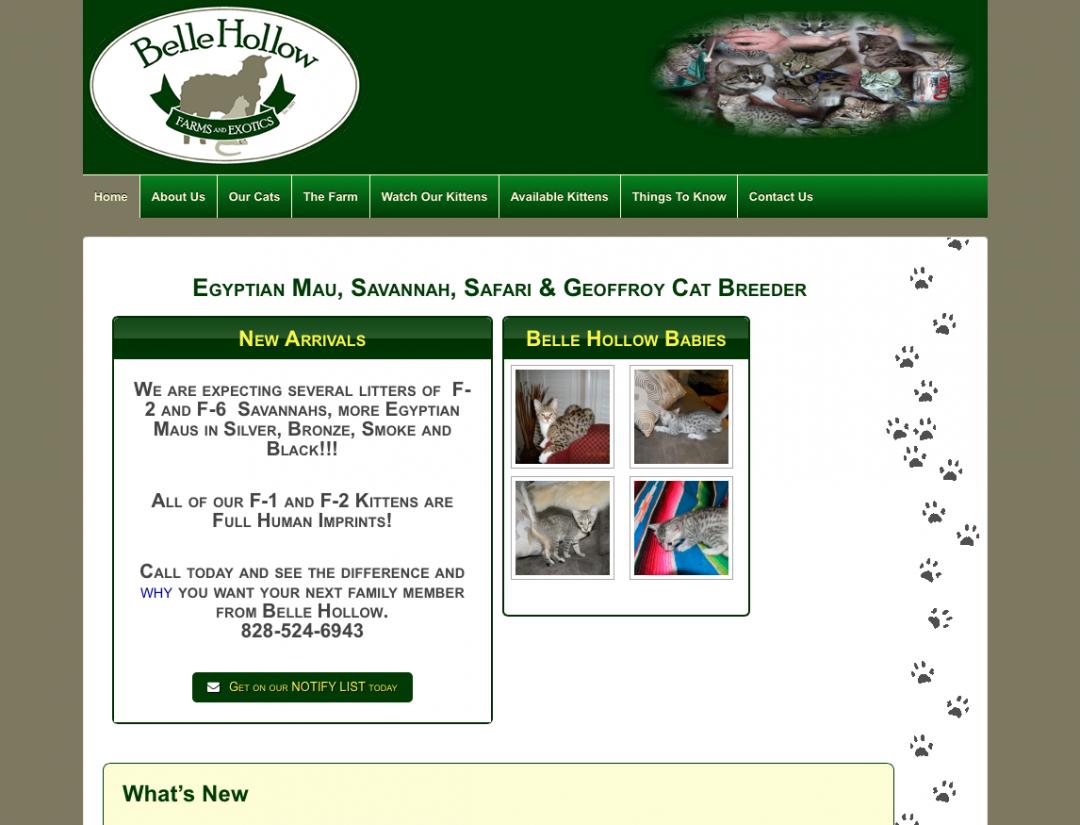 Bellow Hollow Farms