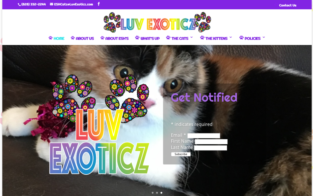 Luv Exoticz Cattery